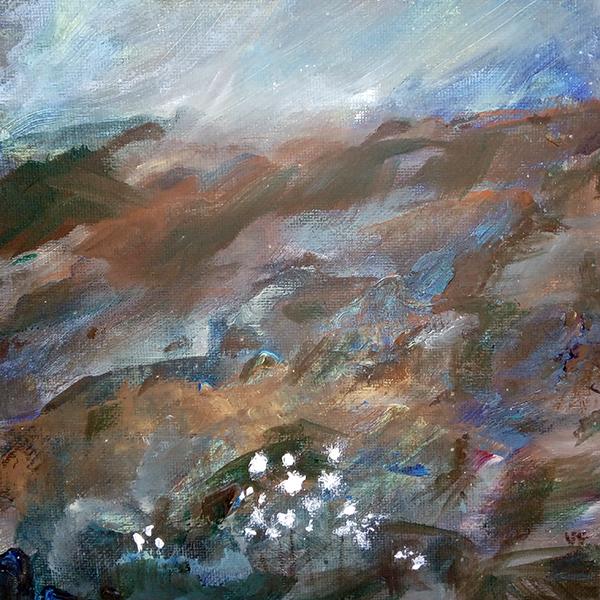 Cotton Grass, Bodmin Moor